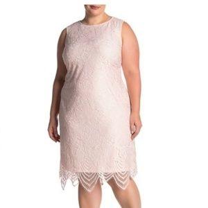 Sharagano Dresses - Sharagano scallop lace tank dress